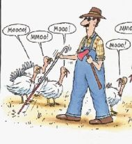Thanksgiving-blindfarmer2.jpg