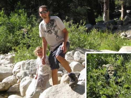 ewoks_sequoia_national_park.jpg